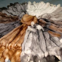 Sale of fur