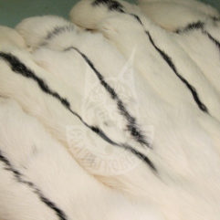 Fox pelt dressed (Snow)