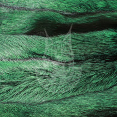 Fox pelt dressed, coloured (Green)