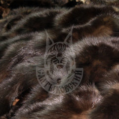 Sable pelts dressed, Saltykovsky-1 (Blind)