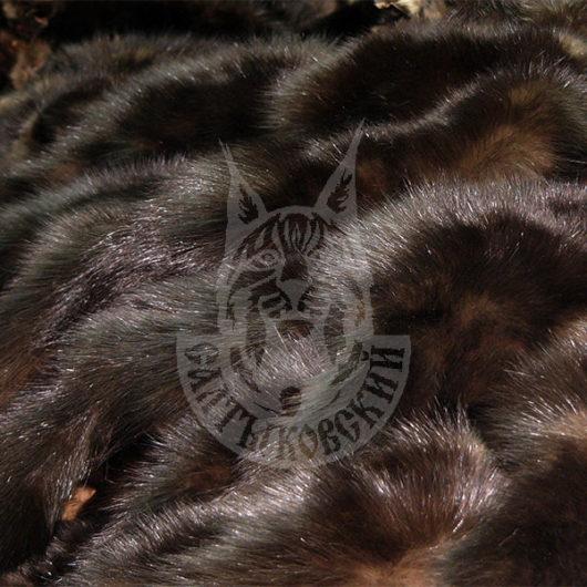 Sable pelts dressed, Saltykovsky-1 (Blind)